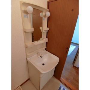ゴールドクレスト 部屋写真4 洗面所
