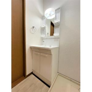 コーン・ガーデン 部屋写真4 独立洗面台