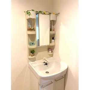 イプシロンビル 部屋写真4 洗面所