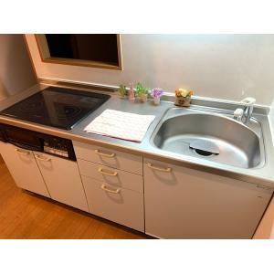 イプシロンビル 部屋写真6 洗面所