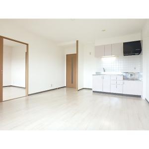 エレンシアⅡ 部屋写真1 居室・リビング