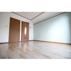 ソレアード 部屋写真1 居室・リビング