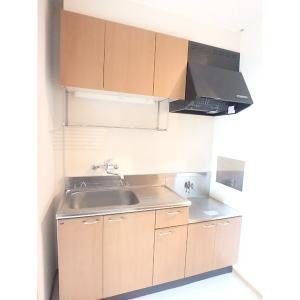 シュトラーセ 部屋写真2 キッチン