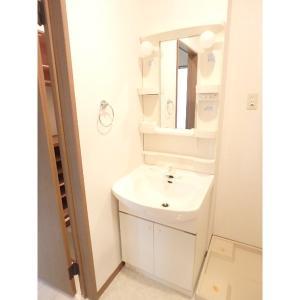 シュトラーセ 部屋写真5 洗面所