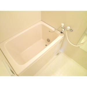 プラセール 部屋写真4 洗面所