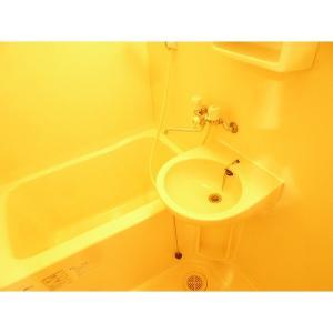 フルーヴカワシマ 部屋写真4 居室・リビング