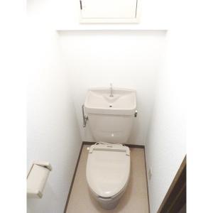 レジデンスアザレア 部屋写真5 トイレ