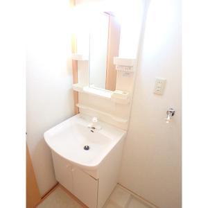 エーデルウィスタリア 部屋写真4 洗面所