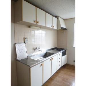 旭ルーミー成田22号館 部屋写真2 キッチン