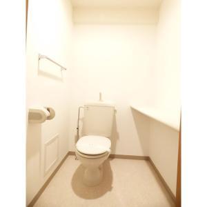 EternalJewel 部屋写真4 広いトイレ空間