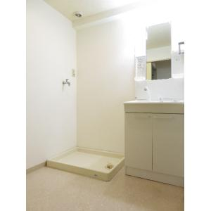 アミーパレス山内 部屋写真5 洗面所
