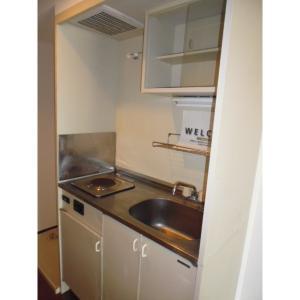 ダイヤグリーンヒル 部屋写真3 キッチン