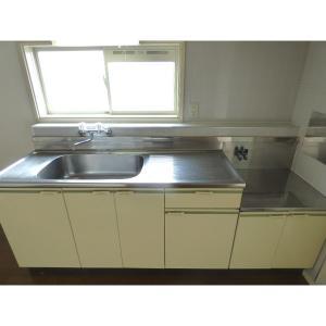 ファインコート新浦安 部屋写真2 広い調理スペース