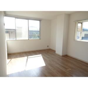 パールガーデン1号館 部屋写真1 居室・リビング