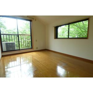 エミーナチェリー 部屋写真1 居室・リビング