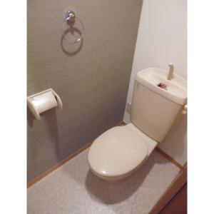 キャッスル B 部屋写真5 トイレ