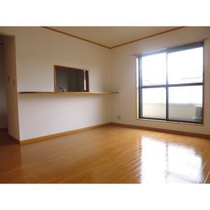 フローレンス美郷参番館 部屋写真1 居室・リビング