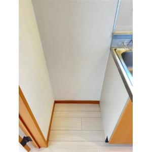アペルト 部屋写真8 玄関