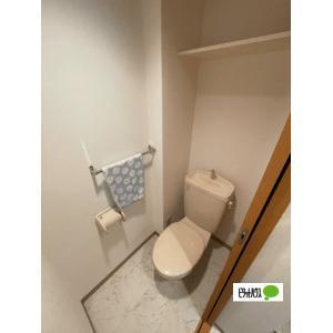 アフェクシオン 部屋写真4 トイレ