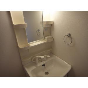 アン・ソレイエ 部屋写真5 洗面所
