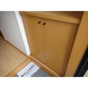 アン・ソレイエ 部屋写真8 玄関