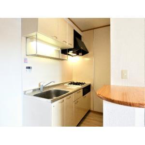 Refeel 部屋写真2 キッチン