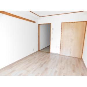 ジョイフル川口 部屋写真1 居室・リビング