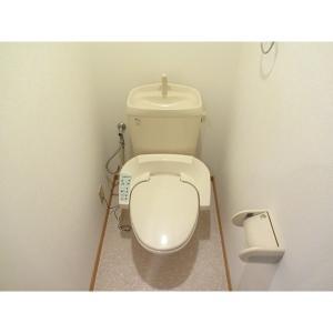 サントノーレ 部屋写真4 トイレ