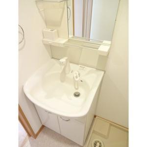 サントノーレ 部屋写真5 洗面所