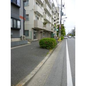 ウィステリア 物件写真5 前面道路