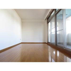 市川メトロプラザ5 部屋写真1 居室・リビング