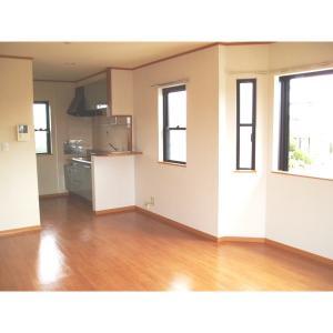 ヴィアーレ弐番館 部屋写真1 居室・リビング