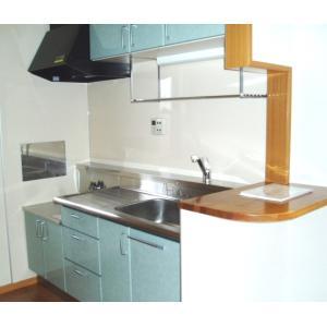 ヴィアーレ弐番館 部屋写真2 キッチン
