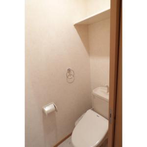 ヴィアーレ弐番館 部屋写真5 トイレ