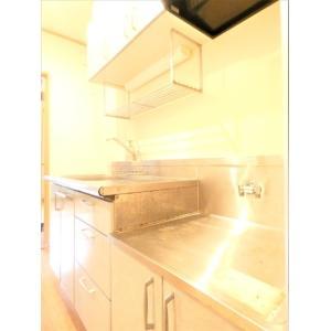 フルール・ド・スリジェ 部屋写真4 トイレ
