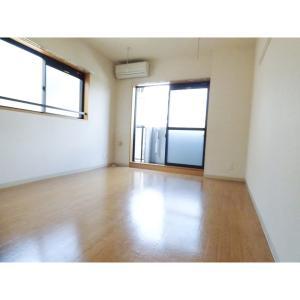 Large 部屋写真1 居室・リビング