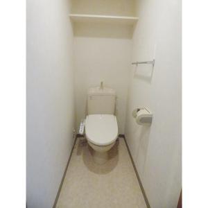 Large 部屋写真4 トイレ