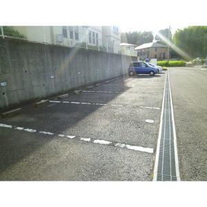 ライフタウン美郷D棟 物件写真2 駐車場