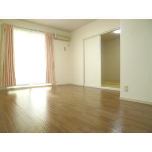 ライフタウン美郷D棟 部屋写真2 居室・リビング