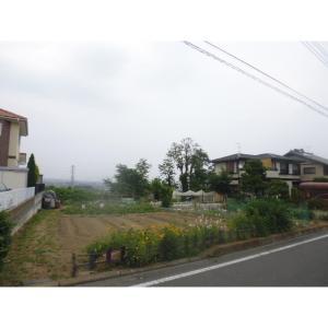 剣崎町土地