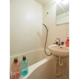 ジョイフル照ヶ丘 部屋写真3 浴室