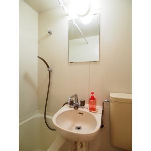 ジョイフル照ヶ丘 部屋写真5 トイレ