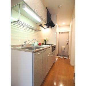 ソフィス南明 部屋写真2 居室・リビング