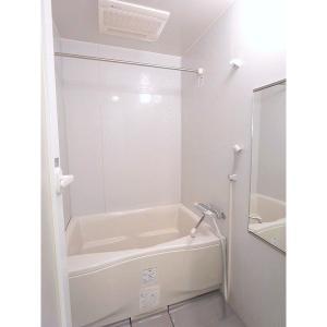 ソフィス南明 部屋写真4 洗面所