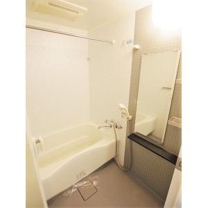 プロシード新栄 部屋写真3 浴室