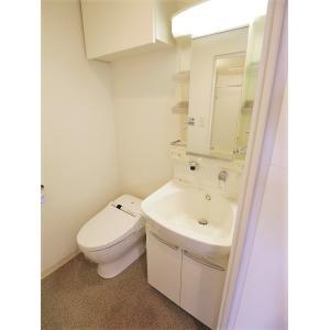 プロシード新栄 部屋写真4 洗面所