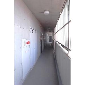 エクセレンス桜山 物件写真5 共用廊下