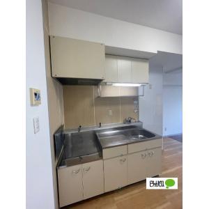 リージョン妙音 部屋写真2 洗面所