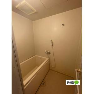 リージョン妙音 部屋写真3 トイレ