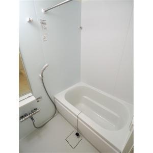 シンシア梅坪 部屋写真3 洗面所